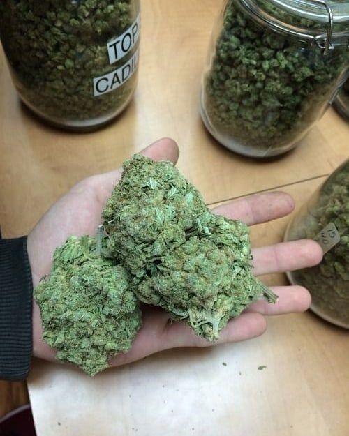 420 Mail Order USA|Buy legit weed Online|Recreational Medical Marijuana Dispensary