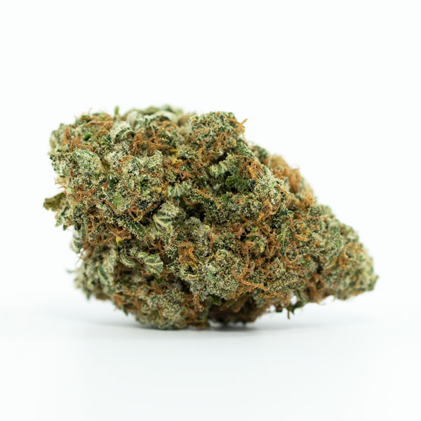 BUY MEDICAL MARIJUANA ONLINE IN CANADA UK USA AUSTRALIA