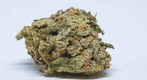 BUY MEDICAL 420
